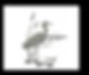 819c9f13-47b9-41f3-abab-b244d626ac35.png