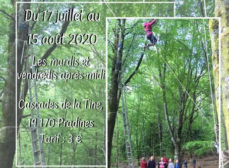 Escald'arbres à la Tine - Pradines