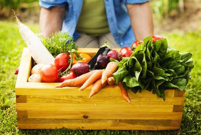 循環經濟/下架食物再利用 如何兼顧商業價值、減少浪費與食安?