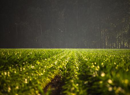 農業發展新思維-循環農業(一) 「農業」與「土地文化」