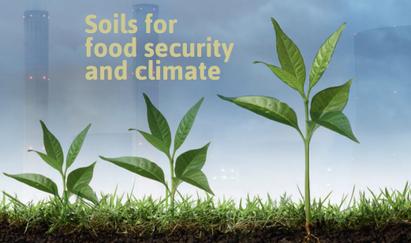加入 4‰倡議:糧食安全與氣候所需的土壤