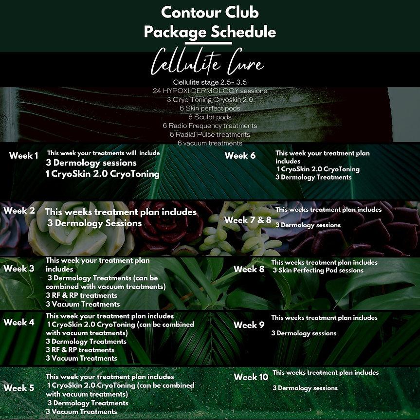 Updated cellulite cure  schedule (2).jpg
