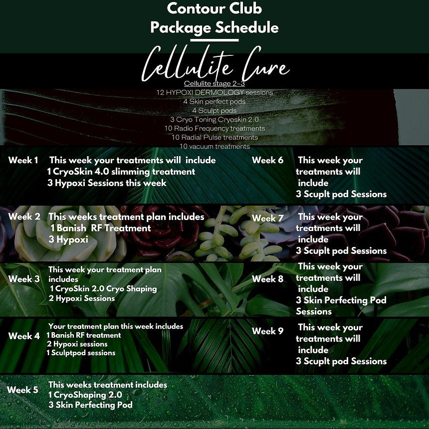 Updated cellulite cure  schedule (1).jpg