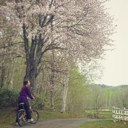 Short bike ride 自転車でポタリング