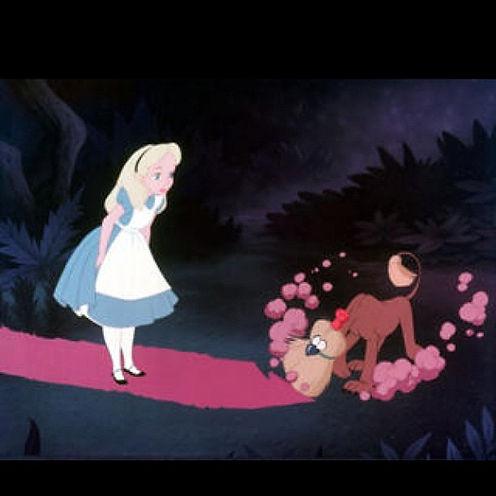 blurry broom with Alice.jpg