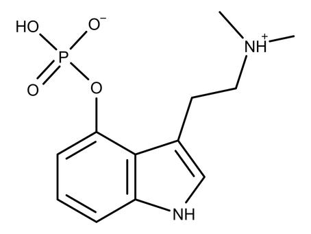 Trip Report #1: Psilocybin