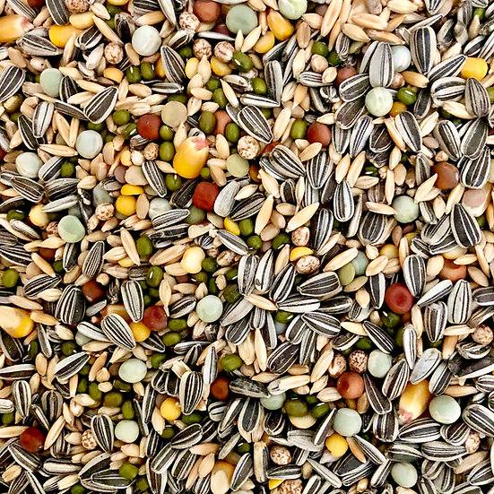 AvianLife Large Sprouting Blend - priced from $10