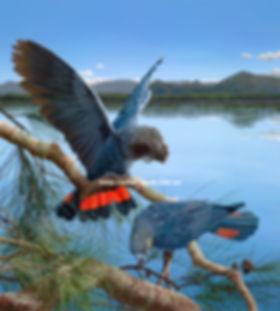 Birds61.jpg