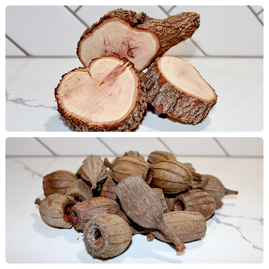 Standard Pack - Casuarina Slices + Gum Nuts - priced from $20