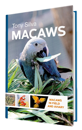Macaws in Field and Aviary by Tony Silva