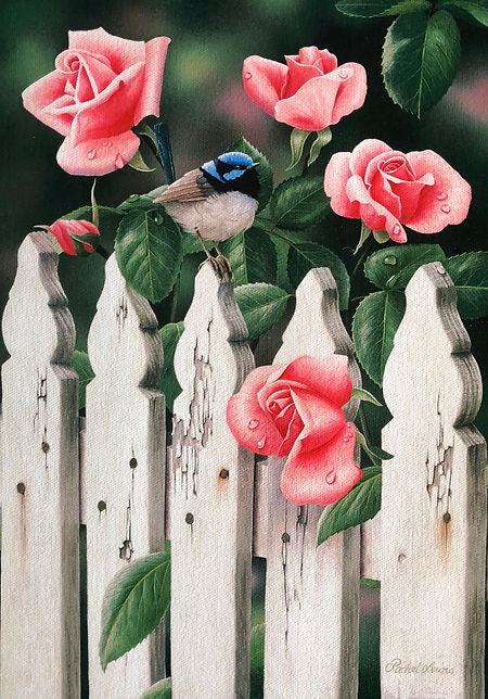 Wren In The Roses