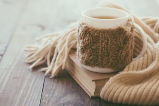 Winter Nourishment