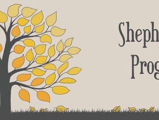 Team Shepherding