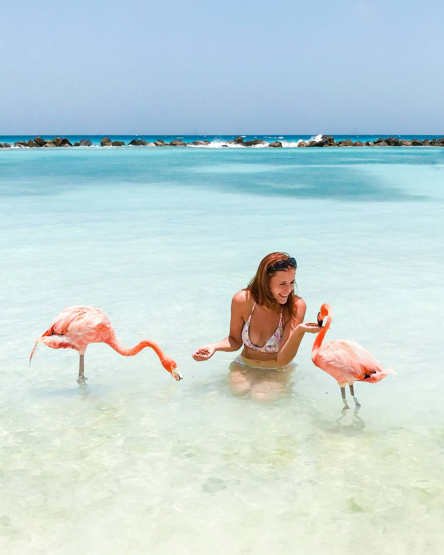 Flamingo Beach in Aruba!