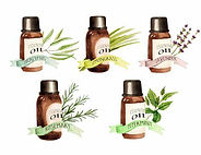 essential oil clip art.jpg