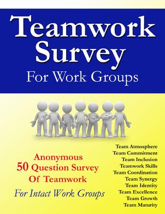 Teamwork Survey For Intact Work Groups