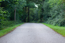 Roads & Paths Stock Images