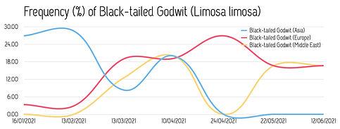 Frequency_Black-tailedGodwit_2021.jpg