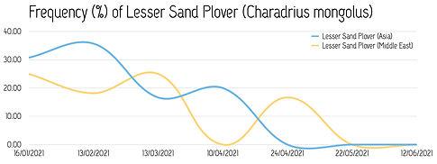 Frequency_Lesser-Sand-Plover_2021.jpg
