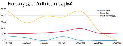 Frequency_Dunlin_2021.jpg