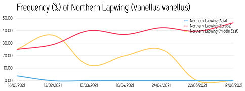 Frequency_NorthernLapwing_2021.jpg