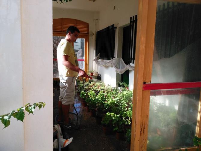 Seguimos con el Taller de Jardinería
