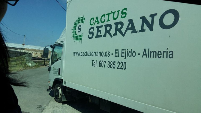 Visita a Cactus Serrano