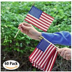 USA Parade Flags.JPG