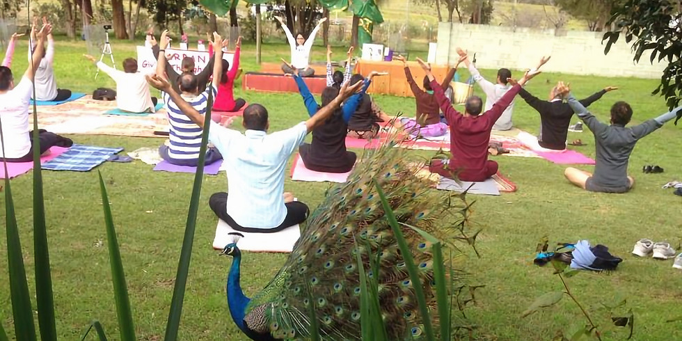 Yoga/Volunteer Day