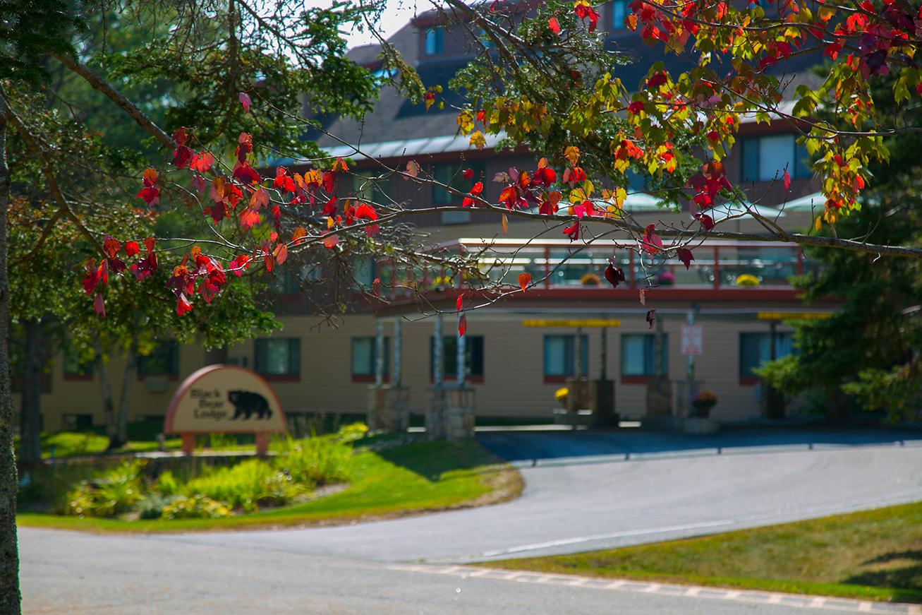 Black Bear Lodge in fall