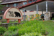 Black Bear Lodge Sign