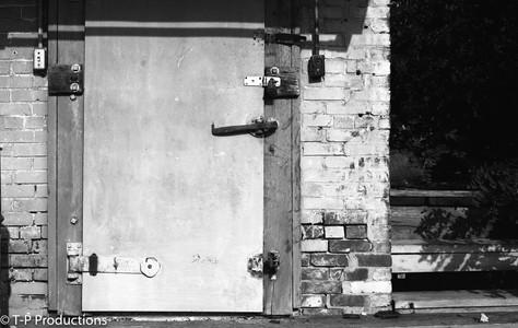 Ice House Door, Taylorville IL