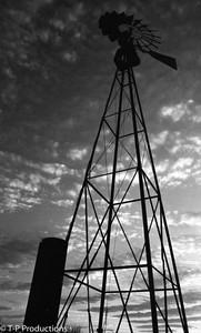 Taylorville Silo & Windmill