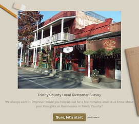 Customer Survey.png
