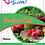 Thumbnail: Fruit Juice Rooibos Red 500ml