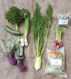 CSA veg bag week 3.jpg