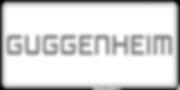 Guggenheim Annuity Carrier