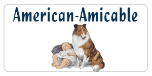 American-Ameicable of TX