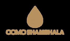 COMOShambhala-Logo-Color.png
