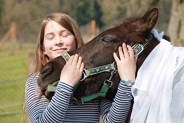 Das Pferd als Türöffner in der Therapie - pferdegestützter Therapeut IVK