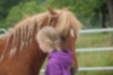 Die Begegnung zwischen Mensch und Pferd ist Inhalt der Weiterbildung zum Pferdegestützten Therapeuten IVK