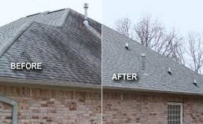Roof Cleaning Service, Pressure Washng Service