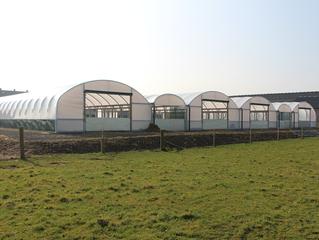 Kuzu Fabrikası ideal barınak mimarisinde son noktaya gelindi