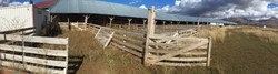 Yarı entansif Anarom çiftliği