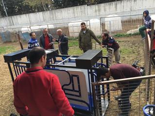 Saytart sistemi canlı hayvan testleri için Ege Üniversitesi Deneme Çiftliği'nde