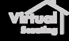 video logo2.png