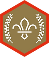 chief-scouts-gold-award-scouts-rgb-png.png