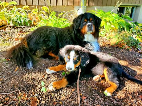 Oakley & Hudson