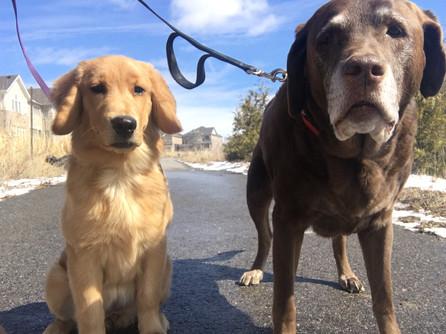 Cali & Reese