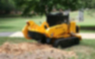 Stump Removal Stump Grinding | Western NY | Grasshopperz Property Maintenance